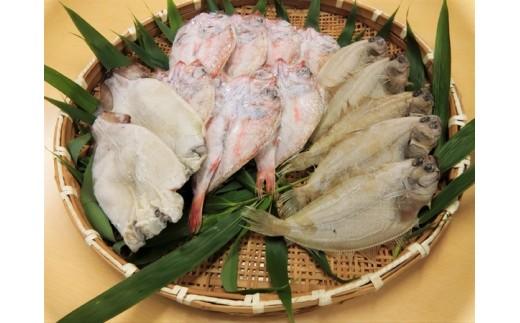 1059.豪華盛り合わせ日本海の美味しい魚づくし