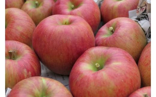 美味しいりんごをお届けします