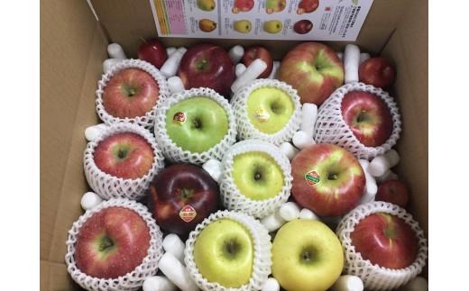 [№5676-1404]信州りんご詰合せ 約5kg(10~18玉)