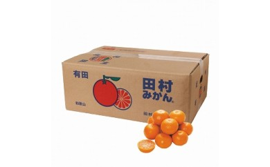 【2020年11月下旬以降発送】和歌山県産プレミアムブランド みかん 青秀 10kg
