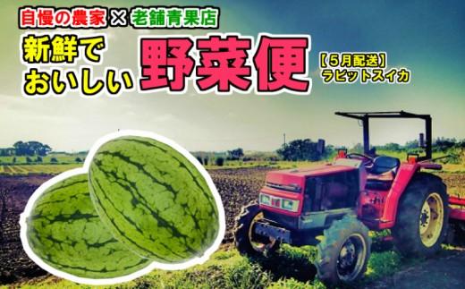 【14596】自慢の農家×老舗青果店 新鮮でおいしい野菜便【5月発送】