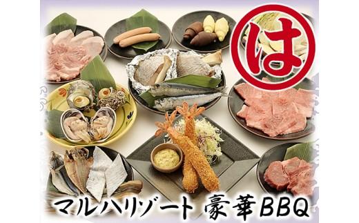 No.197 マルハリゾート 豪華BBQペアお食事券 / チケット バーベキュー 2人 愛知県