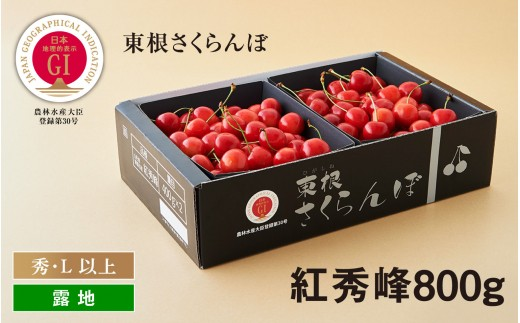E-1225 GI「東根さくらんぼ」 紅秀峰800gバラ詰め JA園芸部提供(2020年6月下旬~7月上旬送付)