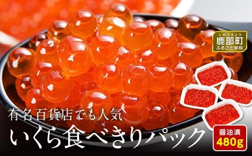 【丸鮮道場水産】 北海道産いくら醤油漬け食べ切りパック詰合せ(L)(計480g)M8