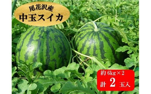 122C.尾花沢産中玉スイカ×2個(7月下旬~8月上旬頃発送)