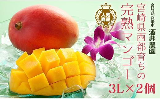 【産地直送】酒井農園 西都産 宮崎完熟マンゴー3L×2個<1.5-4>