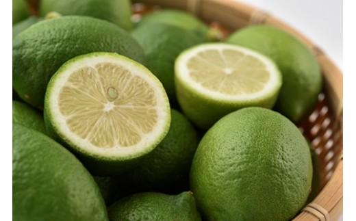 大鶴農園の国産レモン5キロ箱入り