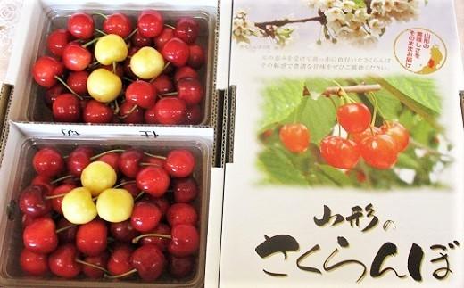 0025-2004 さくらんぼ(紅秀峰・月山錦6粒)700g
