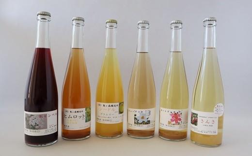 2019年産さわやかな早生種使用!新酒シードル・ワイン 6本(500ml)セット 【557】