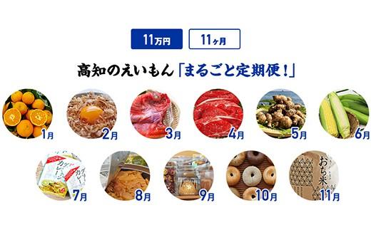 【11カ月】高知のえいもんまるごと定期便!11万円コース
