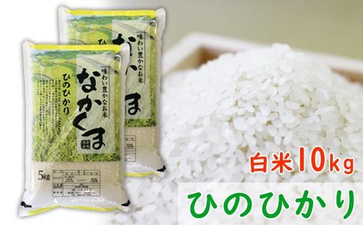 D-102  【定期便】令和元年産 熊本県あさぎり町産のお米ヒノヒカリ 10kg(5kg×2袋)×4回発送