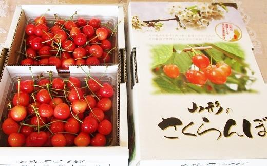 0025-2003 さくらんぼ(佐藤錦)1kg ご家庭用