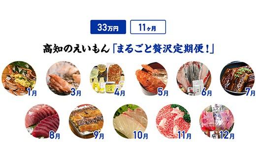【11カ月】高知のえいもんまるごと贅沢定期便!33万円コース