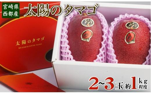 【数量限定】西都産完熟マンゴー「太陽のタマゴ」(JA西都)<3-18>
