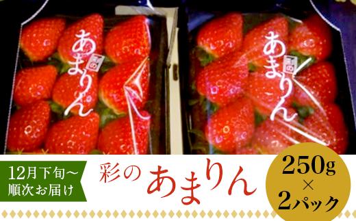 """美里町産いちご """"彩のあまりん"""" (250g×2パック) [0009-4603]"""