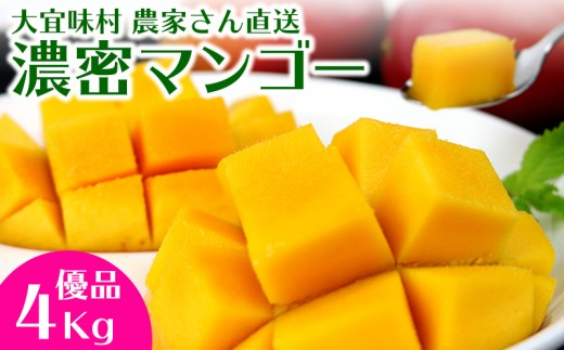 大宜味村農家さん直送 濃密マンゴー《優品・4Kg》2020年発送