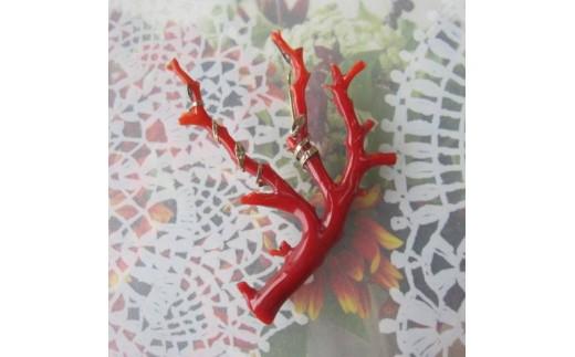珊瑚職人館の珊瑚ブローチ7