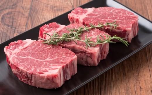 [1550]十勝鹿追産牛肉「とかち晴れ」ヒレステーキ 450g