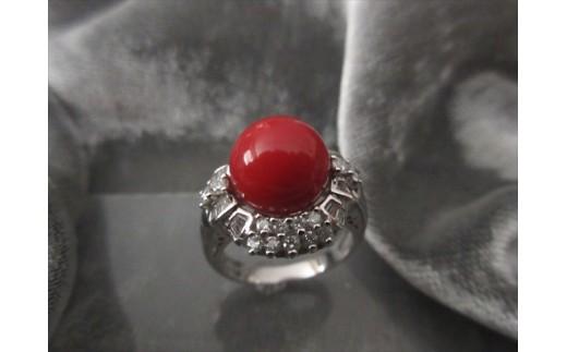 血赤珊瑚丸玉 プラチナリング