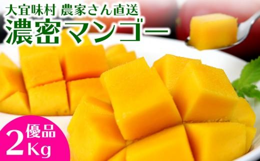 大宜味村農家さん直送 濃密マンゴー《優品・2Kg》2020年発送