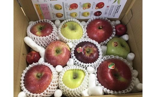 [№5676-1422]「りんごの宝石箱」信州りんご詰合せ 約3kg(8~11玉)