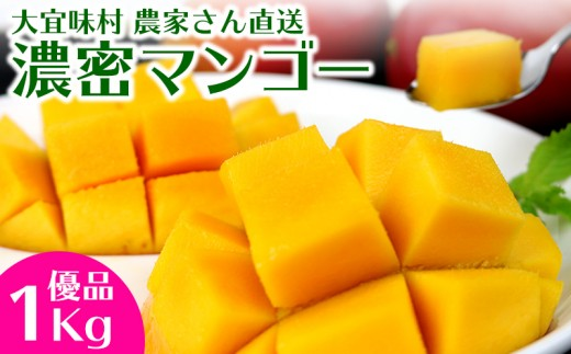 大宜味村農家さん直送 濃密マンゴー《優品・1Kg》2020年発送
