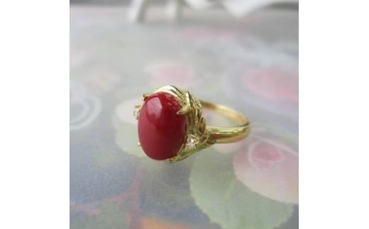 珊瑚職人館の珊瑚の指輪4