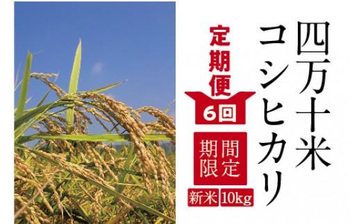 19-606D.【特別企画 定期便6回】【新米】四万十産コシヒカリ10kg