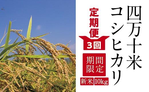 19-605D.【特別企画 定期便3回】【新米】四万十産コシヒカリ10kg