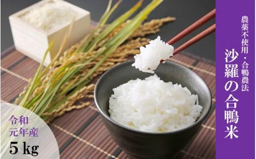 【令和元年産・新米】農薬不使用栽培 沙羅の合鴨米 5kg