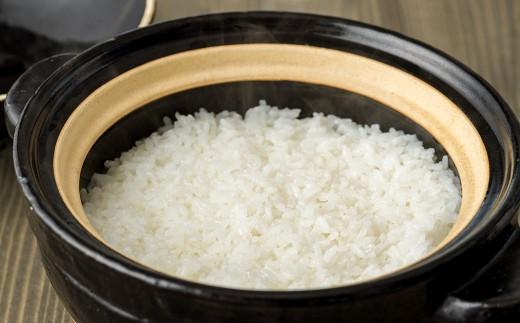 炊き立てのキラキラと光るお米