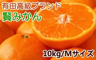 ■有田ブランド 賢みかん10kg(Mサイズ・赤秀)【数量限定】[2020年11月~発送]