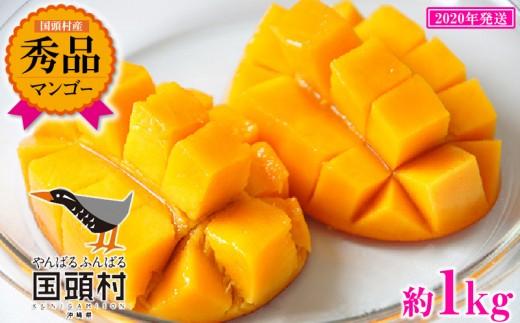 【2020年発送】国頭村産マンゴー《秀品》2玉~3玉入り(約1Kg)
