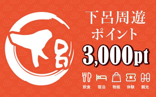 下呂周遊ポイント 3,000pt