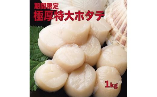 【01003】■[期間限定]極厚!特大!■冷凍ホタテ貝柱1kg