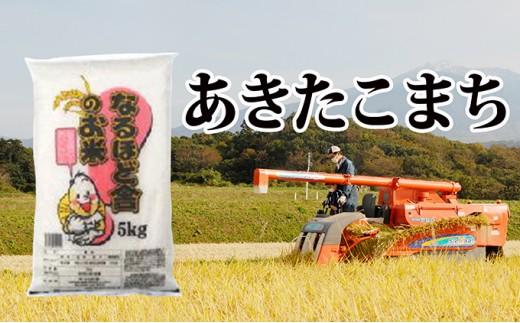 [№5685-1305]秋田県産 あきたこまち白米10kg(5kg×2袋)