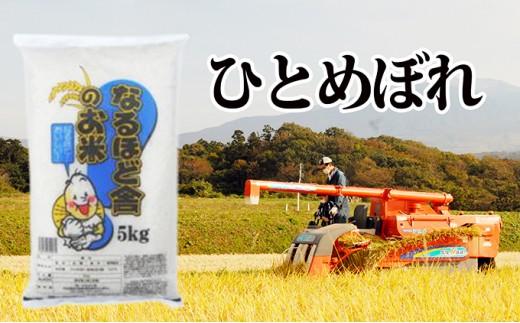 [№5685-1306]秋田県産ひとめぼれ 白米10kg(5kg×2)