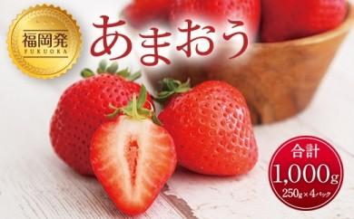 【2020年1月下旬発送開始】国産 あまおう 1kg(250g×4パック)福岡県産 いちご