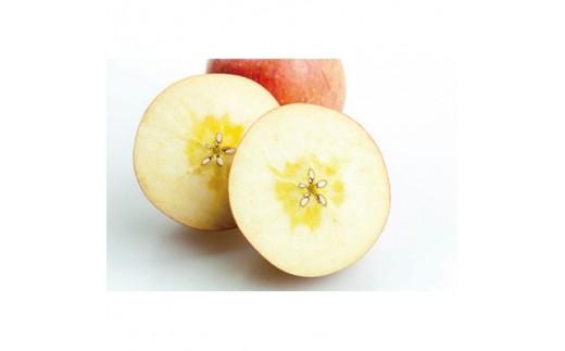 りんご『サンふじ』10kg【1080451】