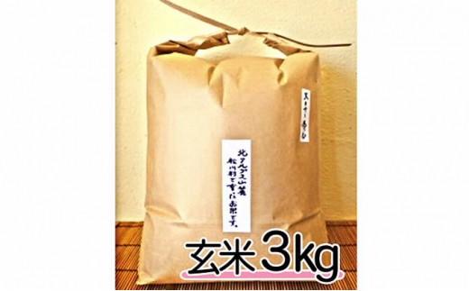 [№5737-0287]自然栽培 天日干し 朝日 玄米3㎏