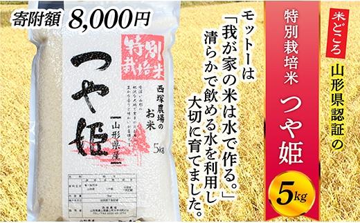 008-R2-007 【新米予約】山形県最上町産 特別栽培米つや姫5㎏