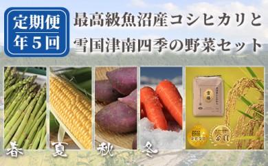 【数量限定】魚沼産コシヒカリ雪椿と四季の野菜詰め合わせ 定期便全5回発送【セットA】