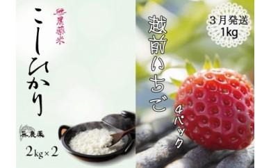 無農薬米(コシヒカリ)4㎏&3月発送/苺1キロ(先行予約)