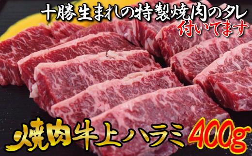 [№5749-0630]牛上ハラミ(サガリ)400g タレ付き焼肉セット