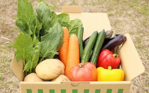 [№5773-0044]熊本県合志の旬のお野菜定期便 年10回コース
