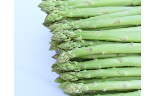 穂先から根元まで皮を剥かずに食べられるほど、とにかく柔らかいのが特徴です。