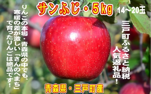 りんご【サンふじ】14~20玉 約5kg 【2020年産・先行受付】