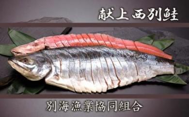 別海より日本一美味な【献上西別鮭】をお届け!甘塩姿切り身(2L)<別海漁業協同組合>