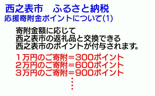 1万円のご寄附で、300ポイントを付与させていただきます。