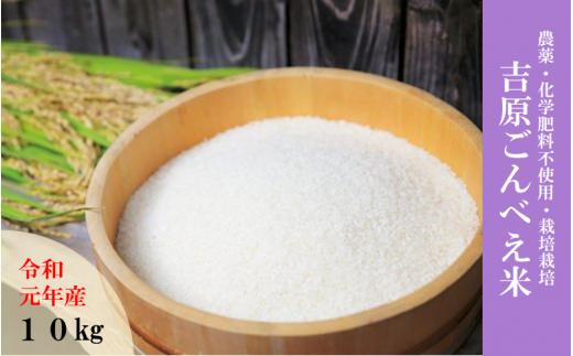 ◆数量限定【令和元年産・新米】「ごんべえ米」10kg